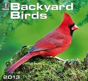 Backyard Birds 2013 Calendar by Zebra Studios
