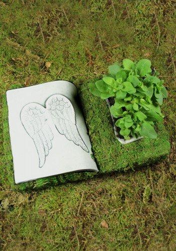 Pot pour plantes mousse livre