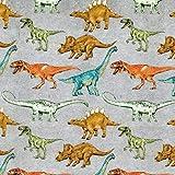 Fabulous Fabrics Baumwolljersey Dinosaurier | by Poppy -