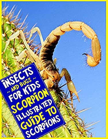 Insects and Bugs for Kids: Scorpion (An Illustrated Guide to Scorpions)