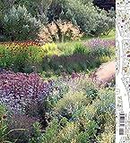 Image de Planting: A New Perspective