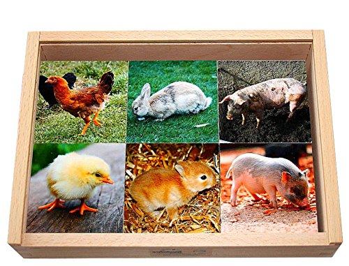 Legespiel Tierkinder und Ihre Mütter, Memo aus Holz, 36 Montessori-Lernspiel-Steine