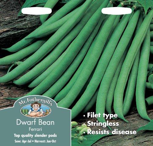 mr-fothergills-12649-ferrari-dwarf-bean-seeds