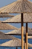 Reed and Bamboo Sun Umbrellas on the Beach Tropical Vacation Journal