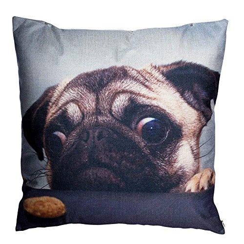 Dekorative Throw Pillow Covers Mops Hund Couch Kissen Decken 18 x 18 Zoll Super Stich Mop