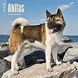 Akitas 2018-18-Monatskalender mit freier DogDays-App: Original BrownTrout-Kalender [Mehrsprachig] [Kalender] (Wall-Kalender)
