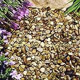 Ghiaia in ardesia per giardino, patio, vialetto, piante