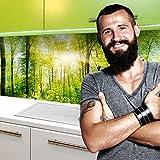 StickerProfis Küchenrückwand Selbstklebend Pro Wald 60 x 220cm DIY - Do It Yourself PVC Spritzschutz