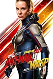 Poster Station UK Ant Man and The Wasp - The Wasp - Film Affiche Affiche Imprimer Image - 30.4 x 43.2cm Taille Affiche de Film