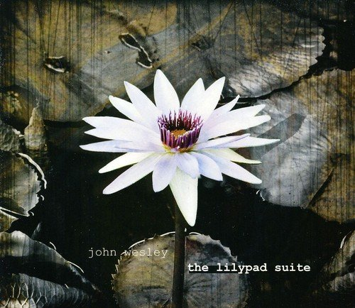 The Lilypad Suite