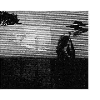 Evidence of Time Travel [Vinyl LP]