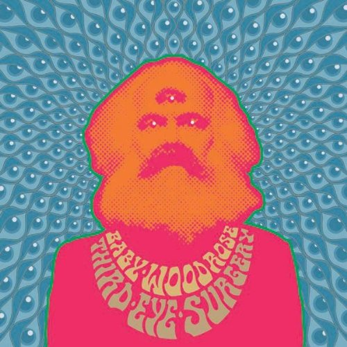 Baby Woodrose: Third Eye Surgery [Vinyl LP] (Vinyl)