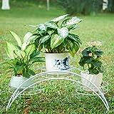 CUYY Espositore Elegante del Patio del Giardino della pianta in Vaso del Metallo dell'Arco con 3 Supporti di Mostra dei Supporti dei vasi da Fiori dei Supporti