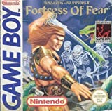 Fortress of fear Wizards and warriors x -