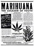 DRUG AWARENESS WARNING MARIJUANA WEED CANNABIS PANIC USA ART PRINT POSTER BB7395