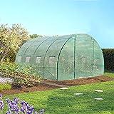 IDMarket - Serre de jardin tunnel 12 m² verte translucide 3x4 m