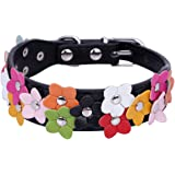 Pet Moon Soft Leather Dog Collar Flower Colour Padded Mulitple Colours (Black, Mediem(11.6 - 15.2 in))