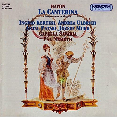La Canterina, Hob.Xxviii:2: Act I Scene 4: Aria: Io Sposar L'Empio Tiranno (Don Pellagio)