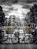 Artland QualitätsbilderAlu Dibond Bilder Alu Art 60 x 80 cm Fahrzeuge Fahrräder Foto Schwarz Weiß D1NK Amsterdam Herengracht Sonnenstrahlen