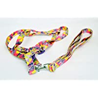 Dogista Pet Products HX-1903 Pet Harnesses, Small, 5.5 Feet