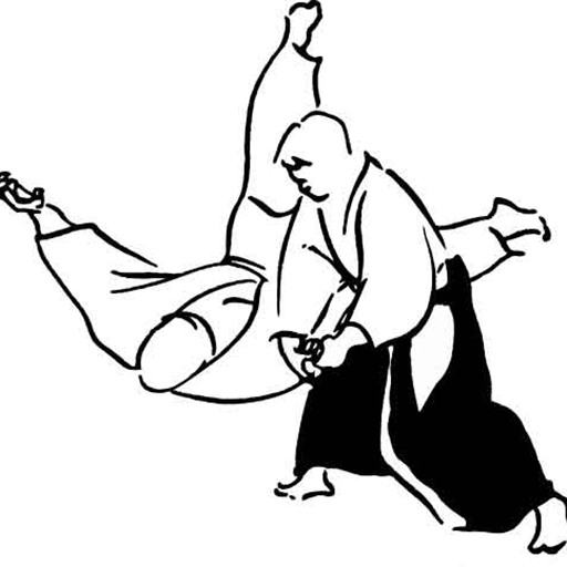 Aikido for sale  Delivered anywhere in Ireland