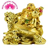 Reiki Crystal Products Porcelain Feng Shui and Vastu Laughing Buddha with Dragon (Golden, Standard)
