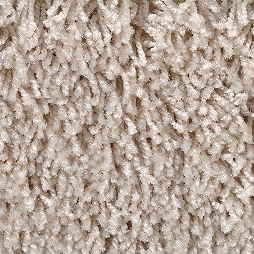 BODENMEISTER BM72231 Teppichboden Auslegware Meterware Hochflor Shaggy Langflor Velour beige 400 und 500 cm breit, verschiedene Längen, Variante:, 5 x 4 m