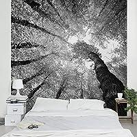 Apalis Waldtapete Vliestapete Bäume Des Lebens II Fototapete Quadrat |  Vlies Tapete Wandtapete Wandbild Foto 3D