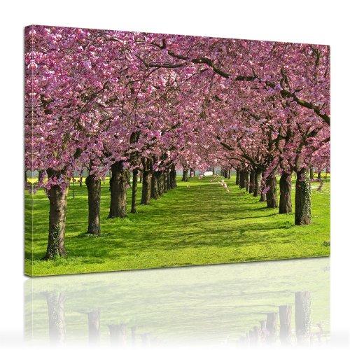 Bilderdepot24 immagine su telaio a cunei fiore di ciliegio 80x60cm - telaio di vero legno, stampa su tela di cotone 100%, stampa artistica intelaiata e pronta da appendere