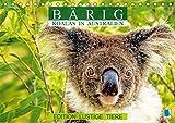 Bärig: Koalas in Australien - Edition lustige Tiere (Tischkalender 2019 DIN A5 quer): Koalas: Lebende Teddybären (Monatskalender, 14 Seiten ) (CALVENDO Tiere)