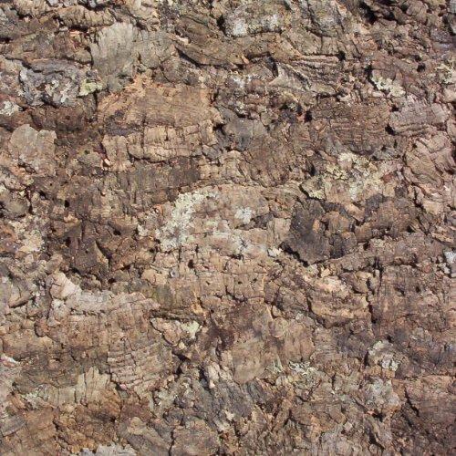"""Zierkork-Rückwand 90 x 60 cm """"Natur"""" , Kork Rückwand , Korkrückwand , Zierkorkrückwand - Inhalt 0,54 qm / Grundpreis 53,70 €/qm"""