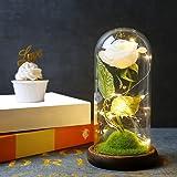 Powstro Lampada con Ornamenti di Rose, Lampada a LED in Vetro Rosa immortale con Simulazione Romantica, Luce Decorativa per c
