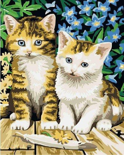 Bricolage numérique toile peinture à l'huile de décoration en nombre Kits Deux chats mignons 16 * 20 pouces.