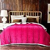 Met Love Vier Jahreszeiten Warme Decken Rose Rot Rosa Wohnzimmer Sofa Decke Schlafzimmer Bettdecke Weiche Und Komfortable Einfarbig Decke ( Farbe : Rose red , größe : 180*200cm )