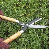 Footprintse Professionelle Gartenschere Heckenschere Clippers mit langem Holzgriff für Gartenschere Shimming Shaping-Farbe: Holz Farbe & Schwarz