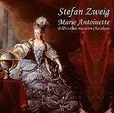 Image de Marie Antoinette: Bildnis eines mittleren Charkaters