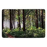 Bathroom Bath Rug Kitchen Floor Mat Carpet,Farm House Decor,Pathway in a Shady Forest of Bushes and Thick Trunks Grass Unique Wild Life Scenery,Green Brown,Flannel Microfiber Non-slip Soft Absorbent