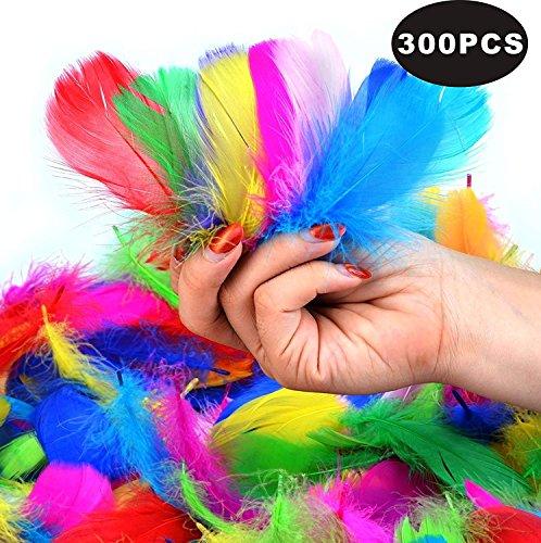 (SUNRIZ Bunte Federn,300 Stück Bunte Natürliche Federn Naturfedern für DIY Handwerk Art Design Basteln Karneval Rosen Montag Halloween Fest Versch)