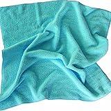 MSV 100065 Serpillière Microfibre Polyester/Polyamide Bleu 50 x 50 x 0,1 cm