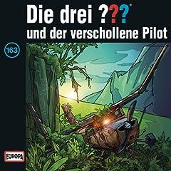 163 - und der verschollene Pilot (Teil 3)