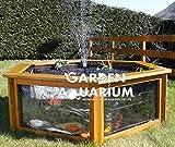 Bassin à poissons pour le jardin en forme d'hexagone surélevé avec fenêtre 700 l