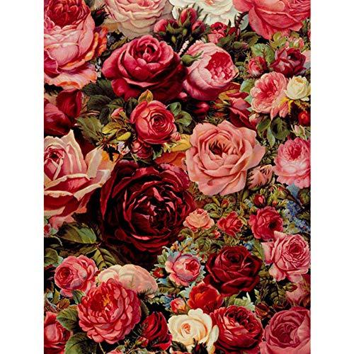 5d DIY Daimond malerei Rosen Cluster Strass volle runde Diamant malerei Stickerei Blume Hand kreuzstich,20x30cm -