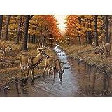 Royal & Langnickel PAL23 Symond's Creek-So Painting by Numbers Kit
