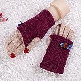 WAWZJ gants Les Filles Des Pulls Des Gants Un Épaississement De L'Hiver La Chaleur L'Écran Tactile Du Vélo Téléphone Mobile Des Gants,De Gueules