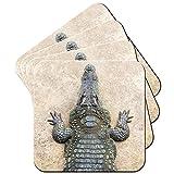 Krokodil von oben Set aus 4 Untersetzern