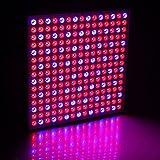 Inovey 45W 200W riflettore tazza pieno spettro LED Grow luci per crescere tenda box serra interna