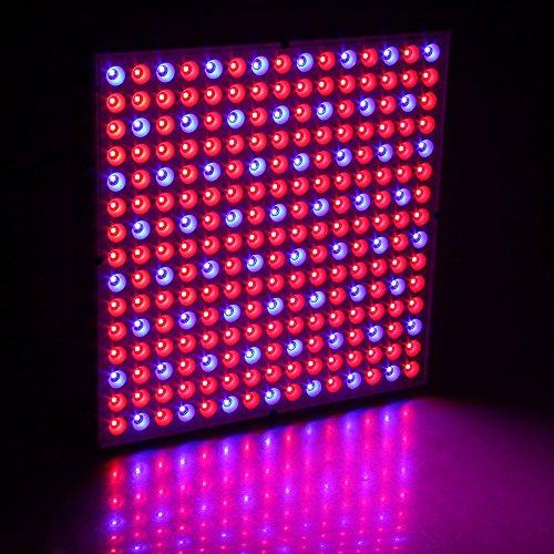 IInovey 45W 200-Watt-Reflektor-Cup Vollspektrum Led Wachsen Lichter Für Grow Zelt Box Indoor Gewächshaus (200w Cup)