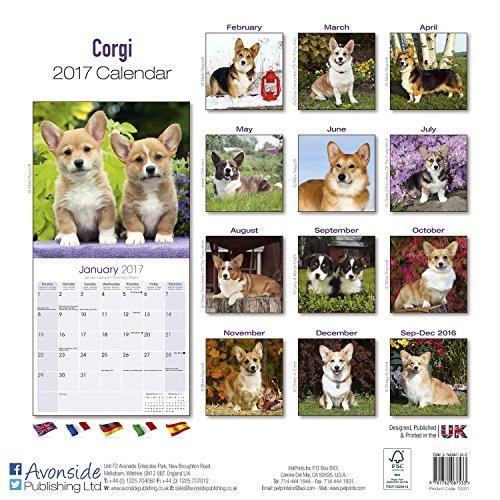 Image of Corgi Calendar 2017 (Square)