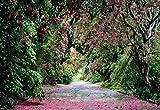 Bild-Wand, Fotografie Hintergrund von Wicklow Park 368x 254Irland des RODODENDRO Rosa Botanischen Garten grün