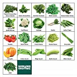 NAMMA ORGANIC's 21 Varieties of Organic Vegetable Seeds for Terrace and Kitchen Garden (1000 + Seeds)